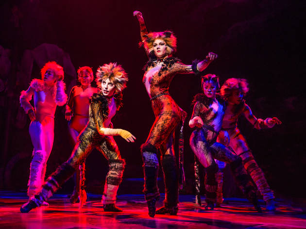 Celebrate CATS on Broadway with Time Out and Tattly!
