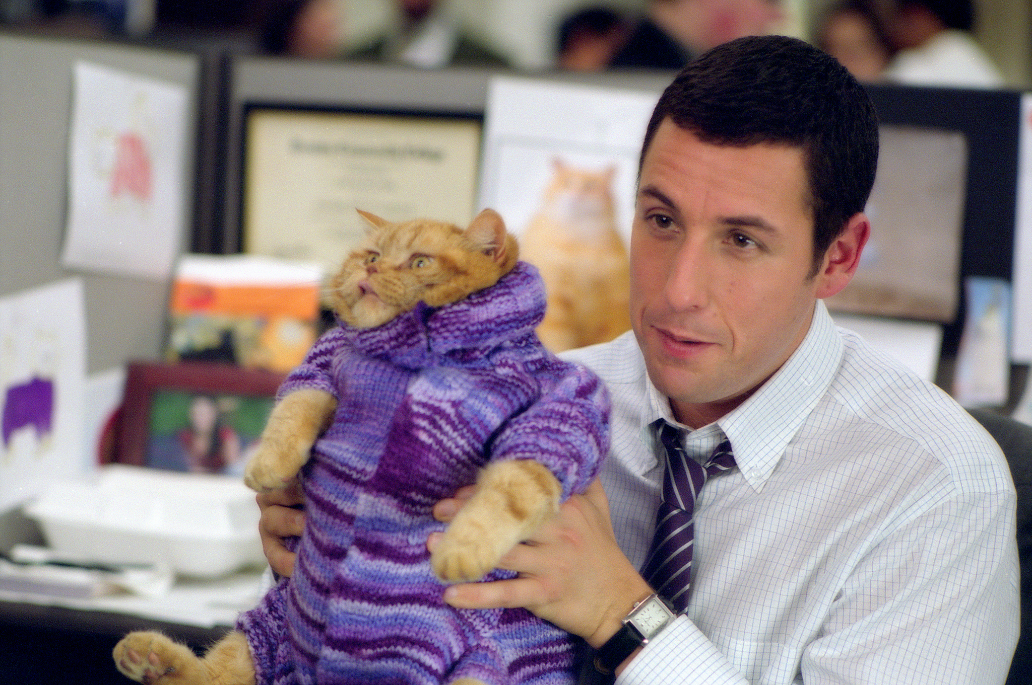 Best Adam Sandler movies from dramas to comedies to cult faves