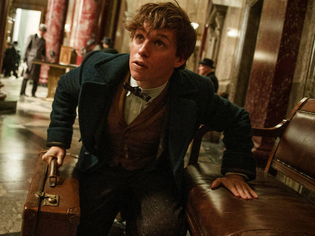 Films to watch before the end of 2016: Fantastic Beasts  and Where to Find Them
