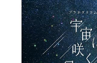 宇宙に咲く星たちへ Songs by Superfly (1).