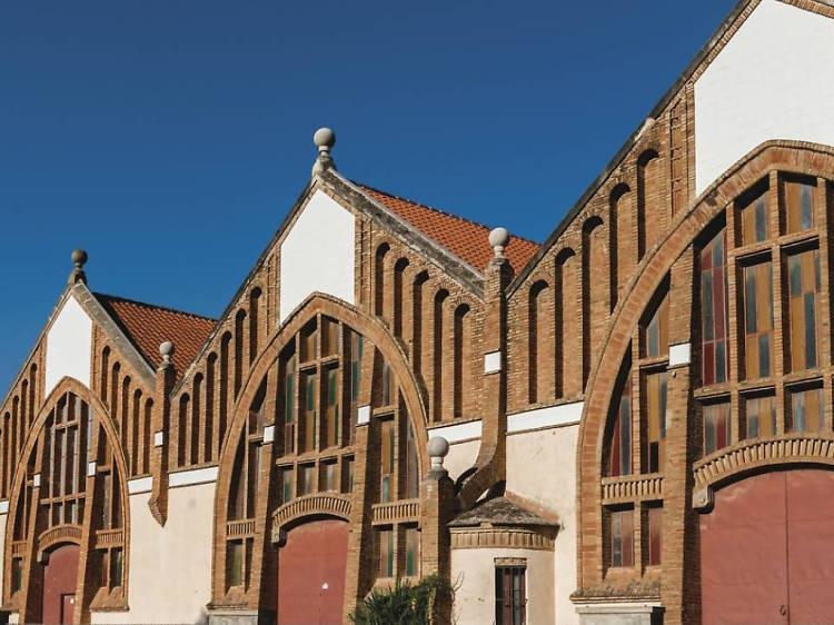 Peregrinatge a les catedrals del vi