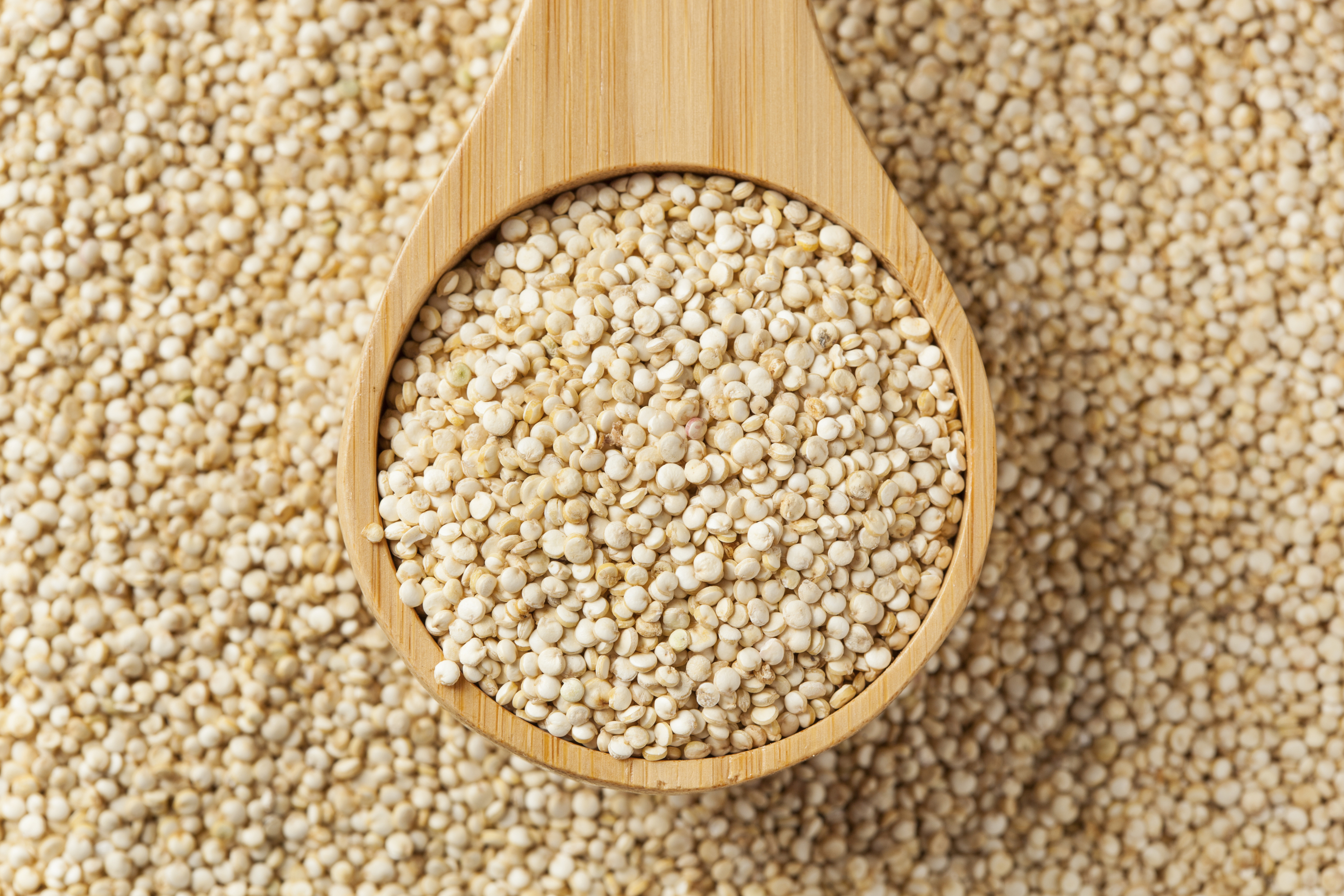 Superfoods – quinoa