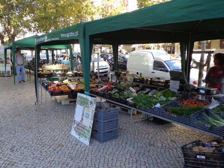 Mercados Agrobio