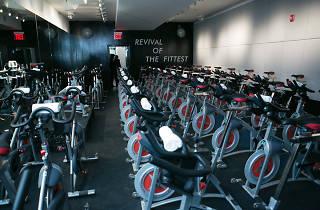 Revolve Fitness