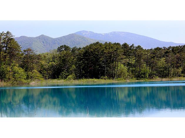 photo: TANAKA Juuyoh 福島県耶麻郡 五色沼自然探勝路