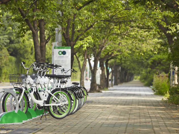서울 자전거 따릉이 타고 한강 라이딩