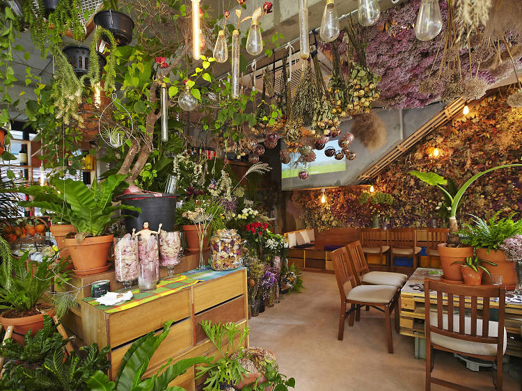 식물로 가득한 카페, 벌스가든