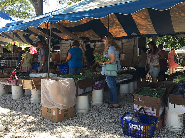 Coconut Grove Farmers Market