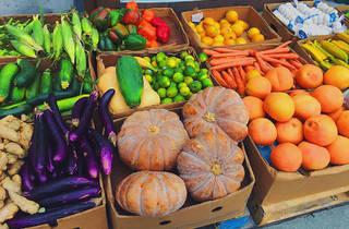 Lincoln Road Farmers' Market
