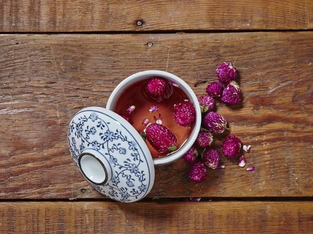 Globe amaranth (qin yat hong)