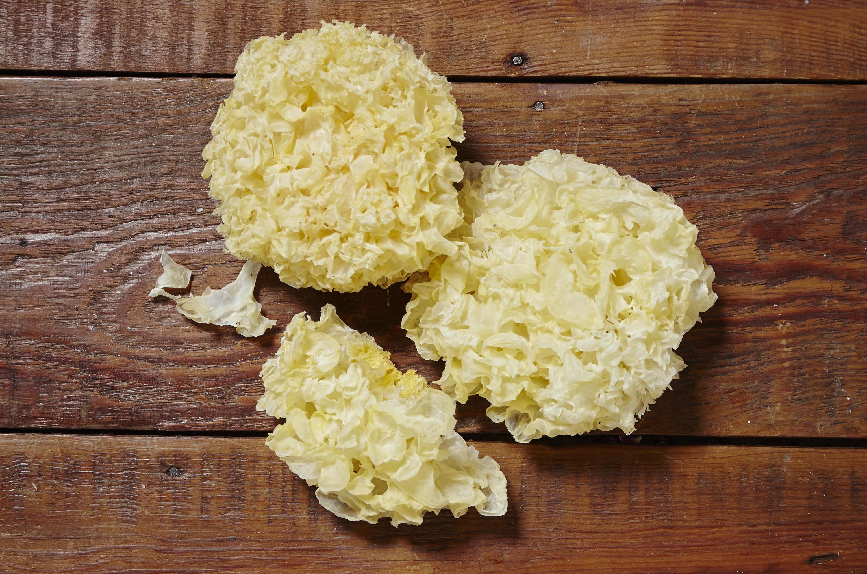 Snow fungus (syut yi)