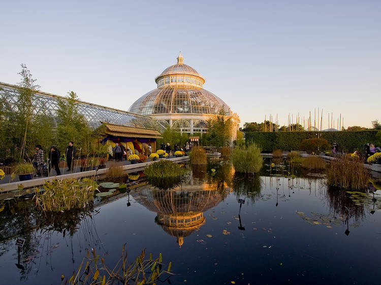 Pick up gardening tips at the New York Botanical Garden