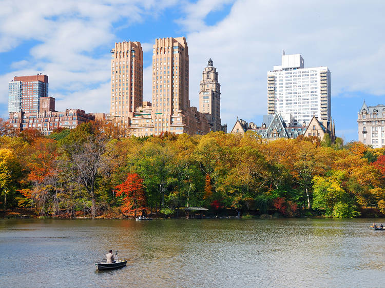 The 31 best things to do this fall in NYC