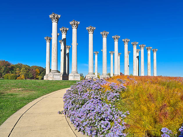 The 12 Washington, DC parks you should visit