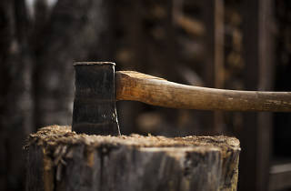 A real-life lumberjack school is coming to Brooklyn