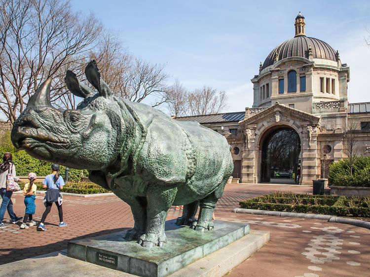 Take a trip to the Bronx Zoo