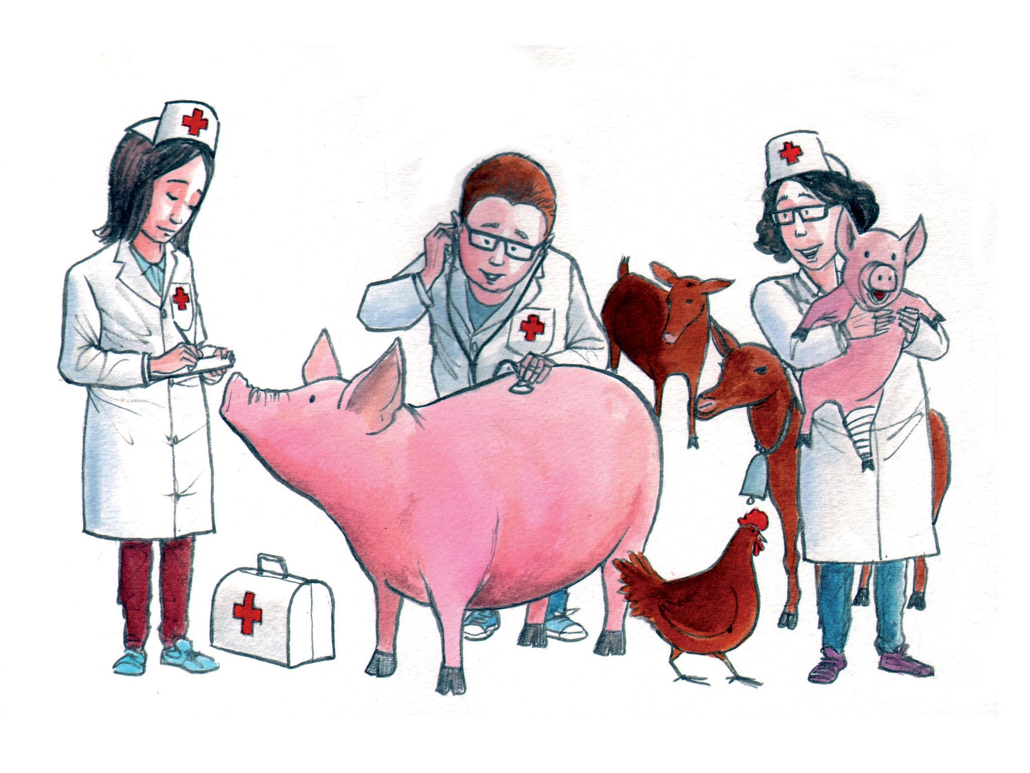 Ilustração de Veterinários