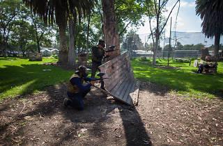 Gotcha osos entre los mejores gotchas de la ciudad de México
