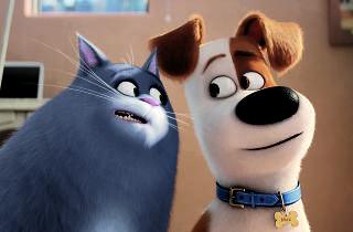 Secret Life of Pets movie still
