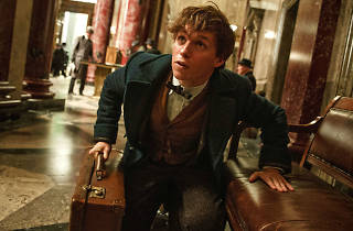 Fantastic Beasts and Where To Find Them screening