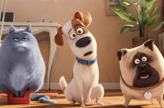 (Photograph: Illumination Entertainment and Universal Pictures)