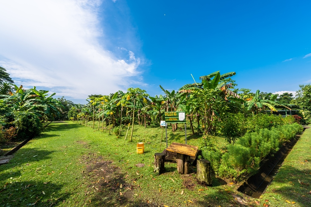 The best farms in Singapore