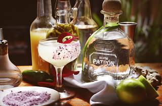 Tequila & Mezcal Fest