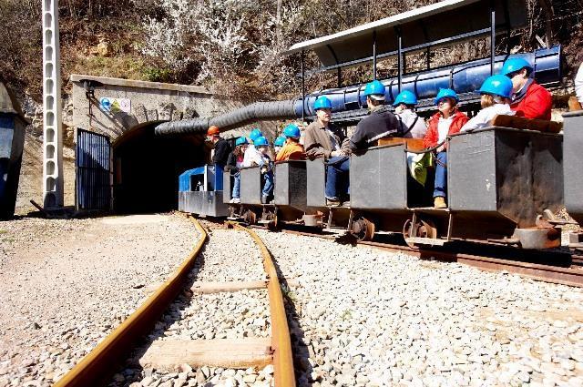 Tren del Museu de les Mines de Cercs