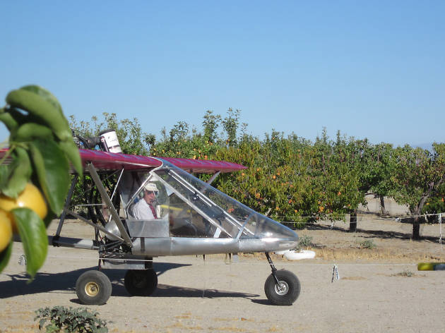Brian Ranch Airport U-Pick Orchard
