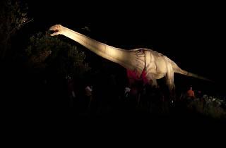 Field Station: Dinosaurs After Dark