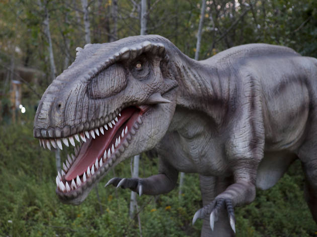 Field Station: Dining with the Dinos