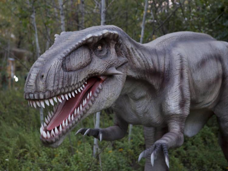 Rancho T-Rex