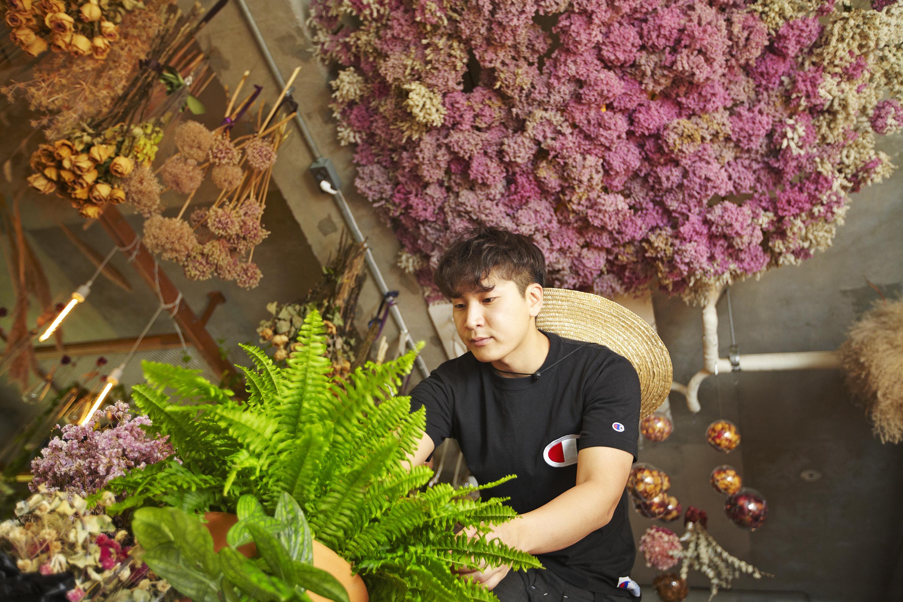 Ver's Garden