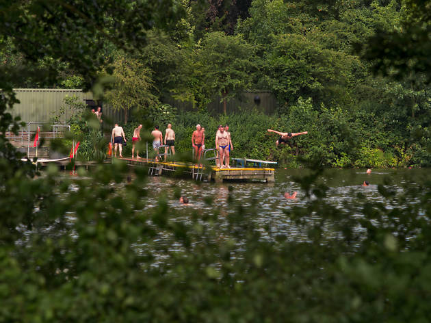 Summer swimmers at the Men's Pond in Hampstead Heath