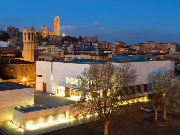 Entreu al Museu de Lleida