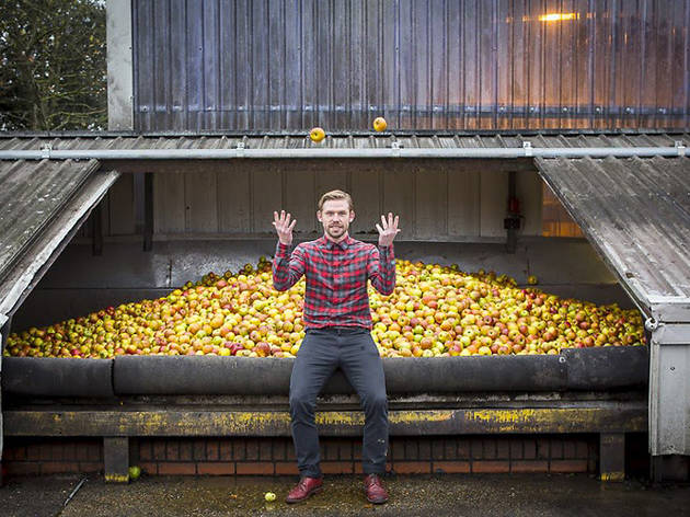 Donate apples to the Urban Orchard ciderhouse and they'll give you booze in return