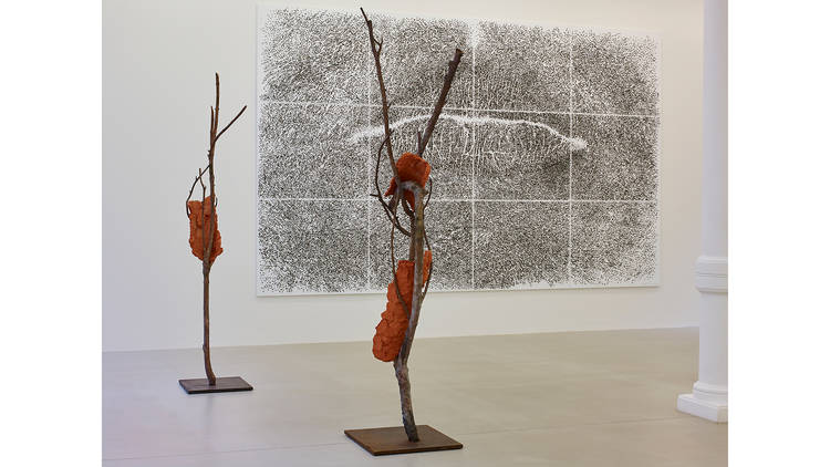 Giuseppe Penone: Fui, Saro, Non Sono (I was, I will be, I am not)