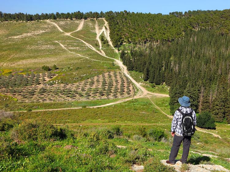 Sentier National d'Israël– Shvil Israël