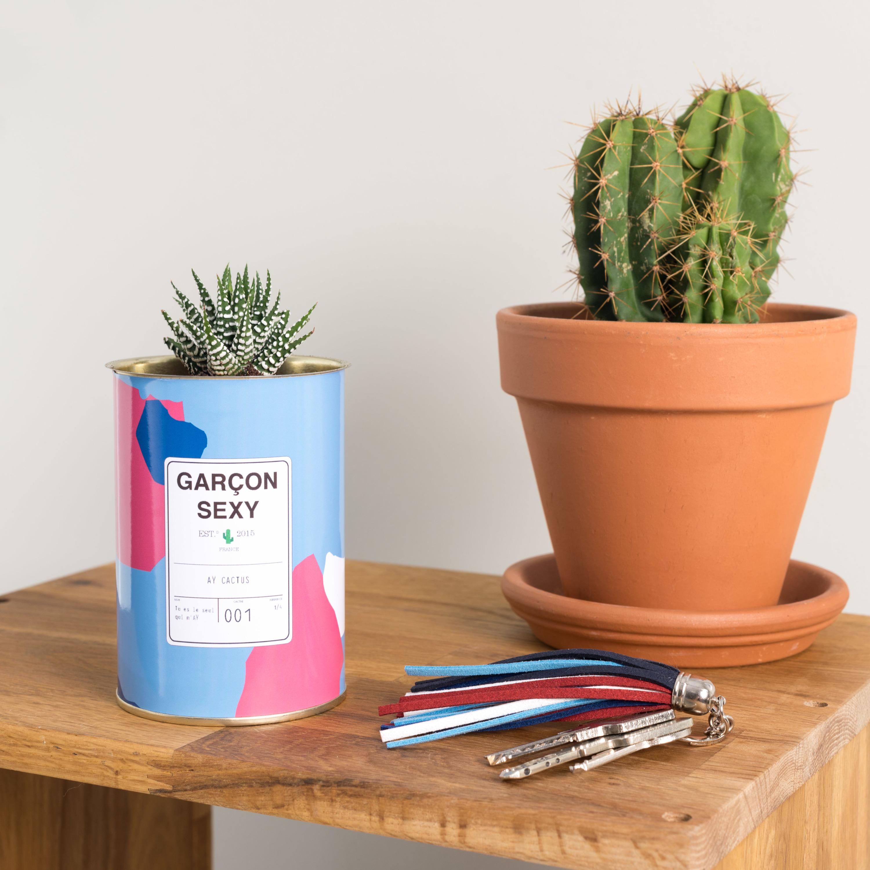 La plus piquante : AŸ Cactus.