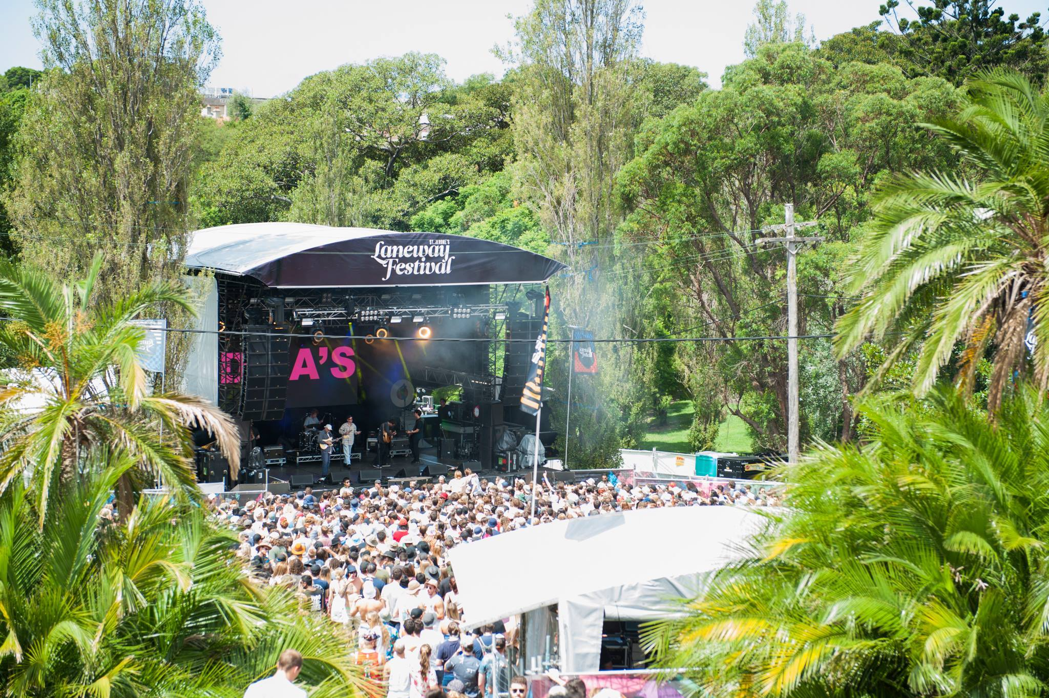 Crowd on hill with trees at Laneway Festival