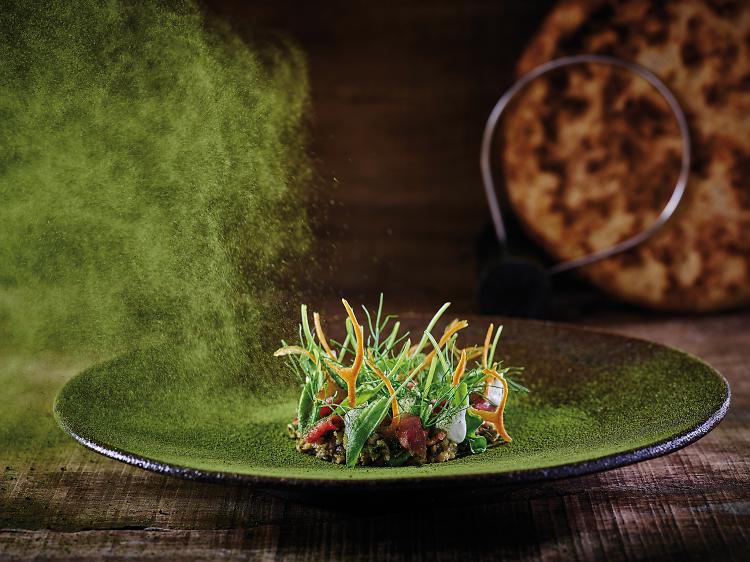 Best Restaurant - Mashya