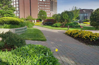 Kendall Square Rooftop Garden