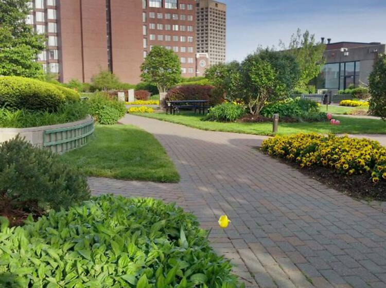 Explore a secret garden in Kendall Square