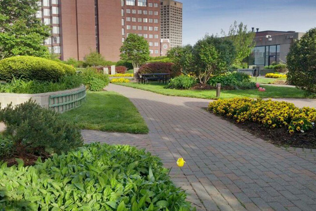 Explore the secret garden in Kendall Square