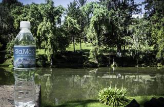 (Reserva de Sta. María, Tlahuapan, Puebla)