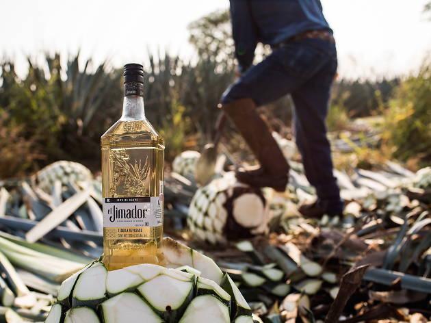 |Presentado por Tequila el Jimador| Cantinas para dar el grito