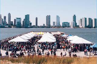 Submerge NYC Marine Science Festival
