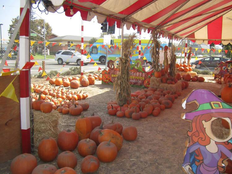 Whittier Pumpkin Patch