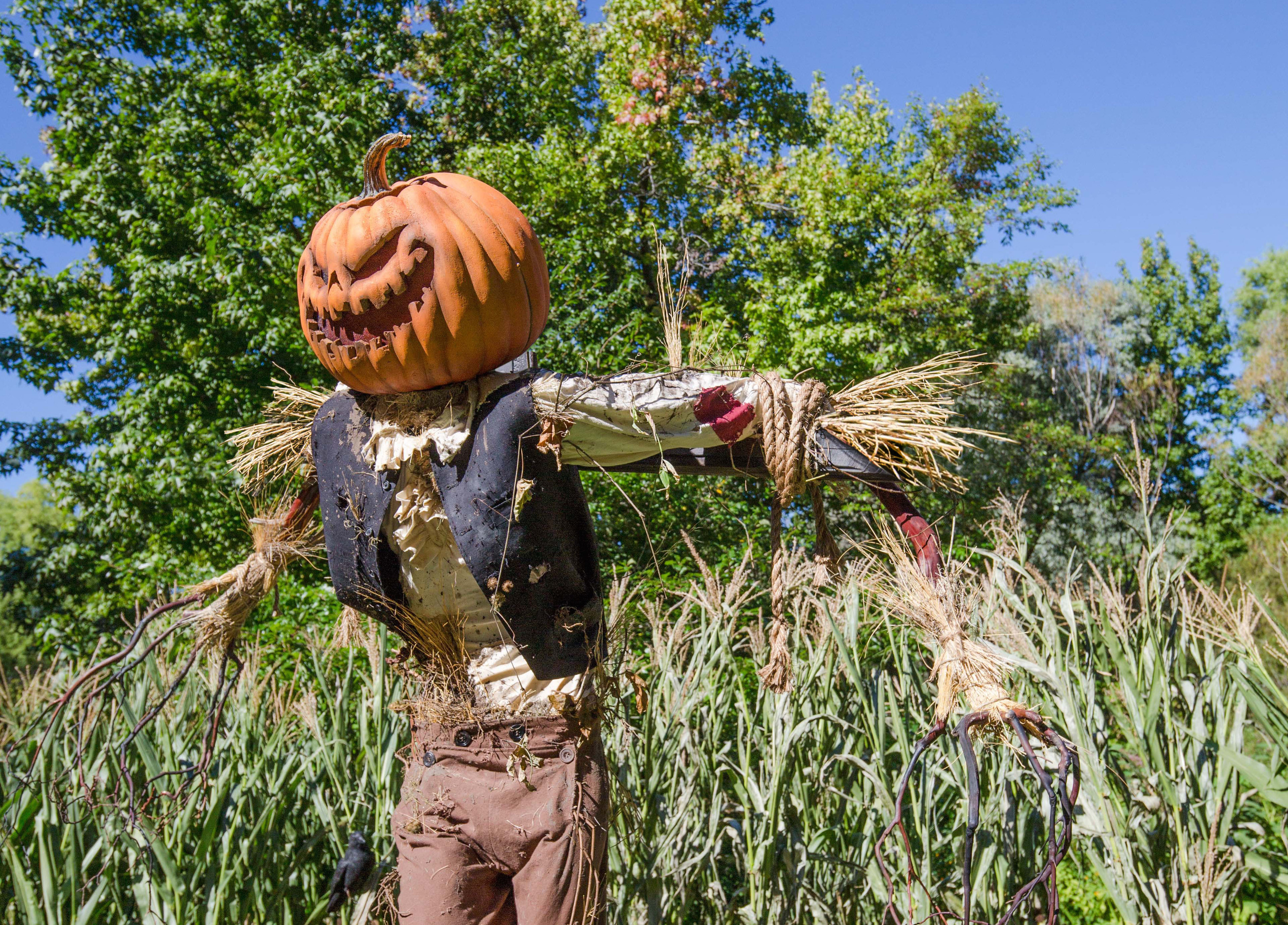 Spooky scarecrows are taking over the New York Botanical Garden