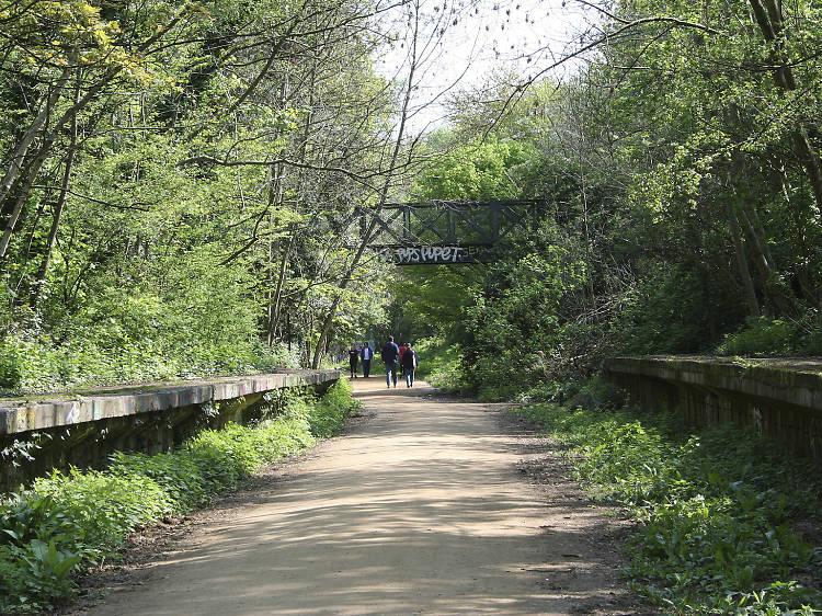 Walk London's longest nature reserve